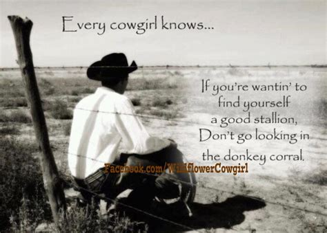 just what the cowboy needed the bachelors of blackwater lake books true cowboy country quote philosophy