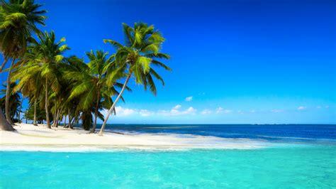 tropical island paradise beach sea paradise beach palms tropical island resort