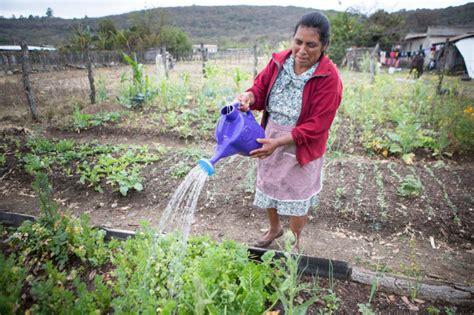 imagenes mujeres rurales fotos d 237 a internacional de las mujeres rurales