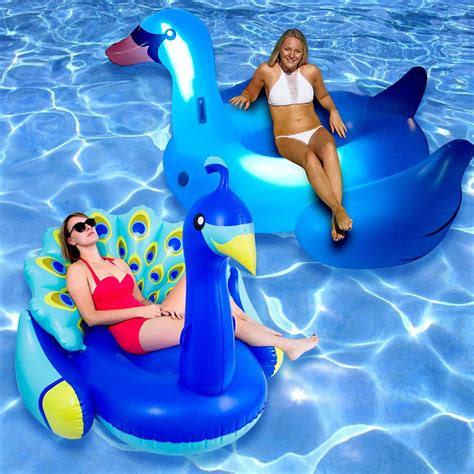 light up pool floats swimline peacock and led light up swan swimming pool
