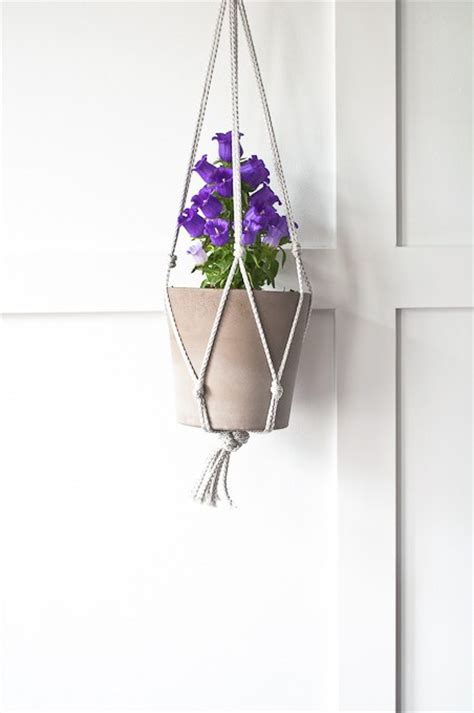 Easy Macrame Plant Hanger - the inspiration gallery zevy