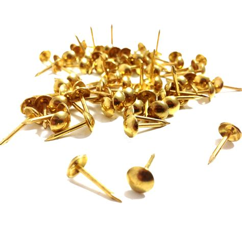 Upholstery Pins Tacks by Brass Upholstery Nail Pin 6 5mm Wide 16mm Length