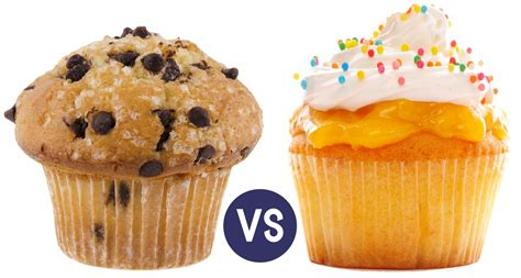 or muffin cupcakes vs muffins wisk