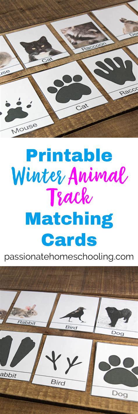 printable animal track cards free printable winter animal tracks identification