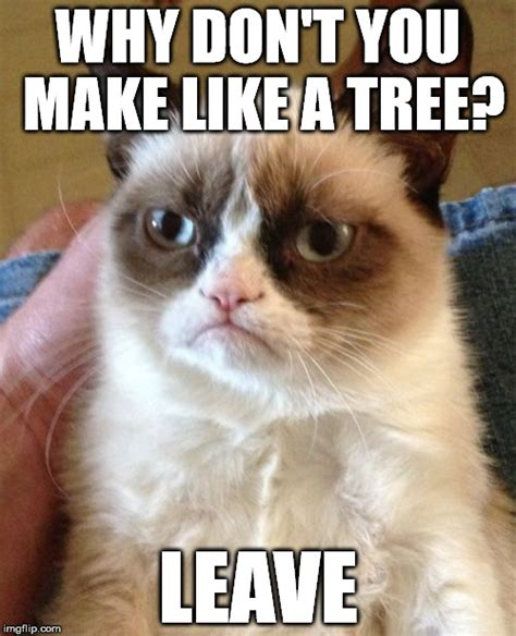 Make A Grumpy Cat Meme - grumpy cat meme imgflip