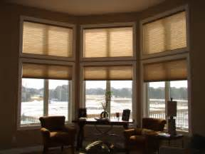 High Efficiency Windows Decor Decorating Interesting Interior Home Decorating With Costco Windows Hatedoftheworld
