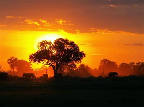 imagenes de paisajes exoticos paisajes exoticos paisajes del africa