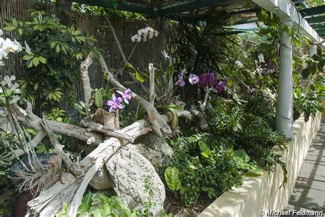 orchideen garten orchideengarten in de la