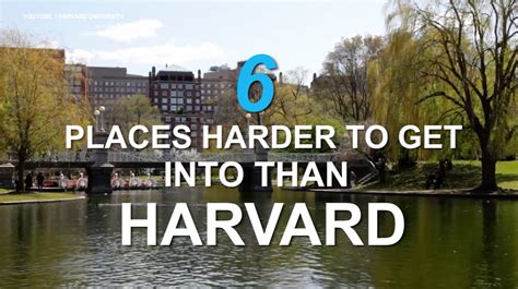 Chance Of Getting Into Harvard Mba by This Is Harder To Get Into Than The Navy Seals