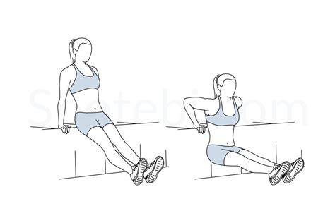 bench dips muscles worked tricep dips illustrated exercise guide