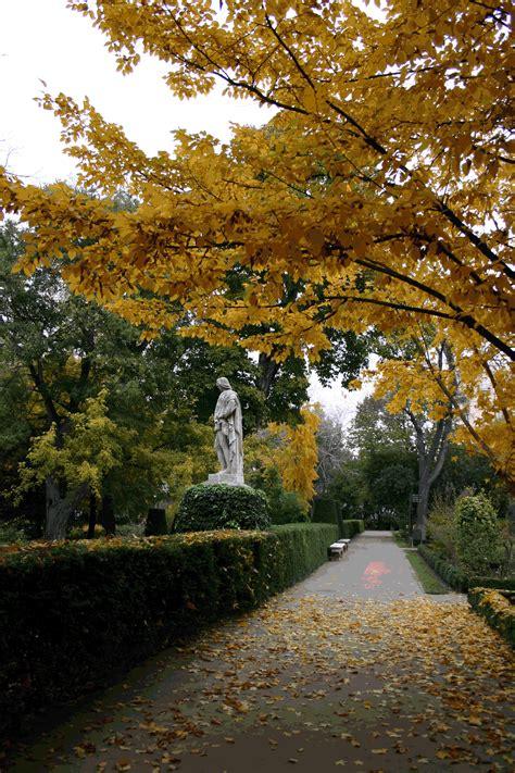 real jardin botanico file real jardin bot 225 nico gif wikimedia commons