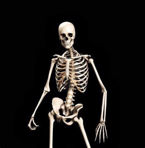 Skeleton Meme - skeletons know your meme