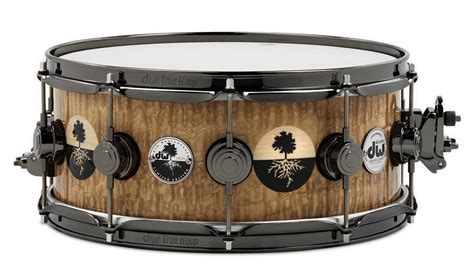 drum workshop 40th anniversary tamo ash 6 5 x 14 inch snare drum mcquade musical