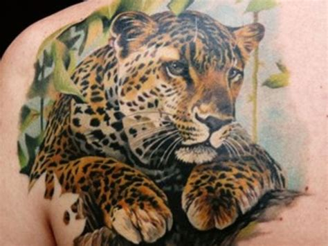 cheetah tattoo designs leopard images designs