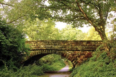 landscaping bridge park forest trees bridge footpath landscape wallpaper