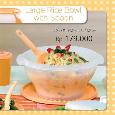 Tupperware Large Rice Bowl With Spoon large rice bowl with spoon all bout tupperware