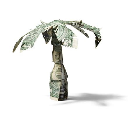 dollar bill palm tree for redbook magazine on behance