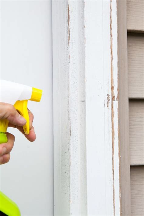 paint over mold in bathroom 17 best ideas about remove mildew stains on pinterest