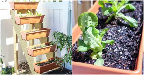 vertical planter diy diy vertical herb garden planter how to
