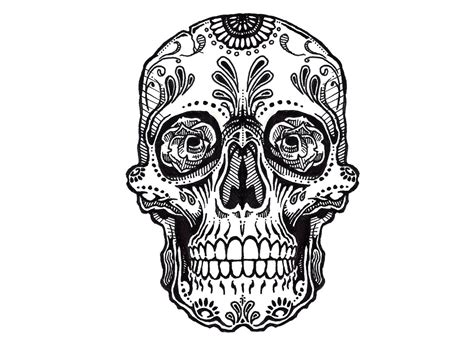 sugar skull clipart designed pencil and in color sugar