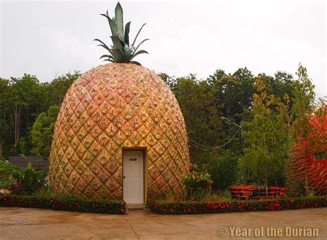 pineapple house the fruit hotel kanchanaburi thailand