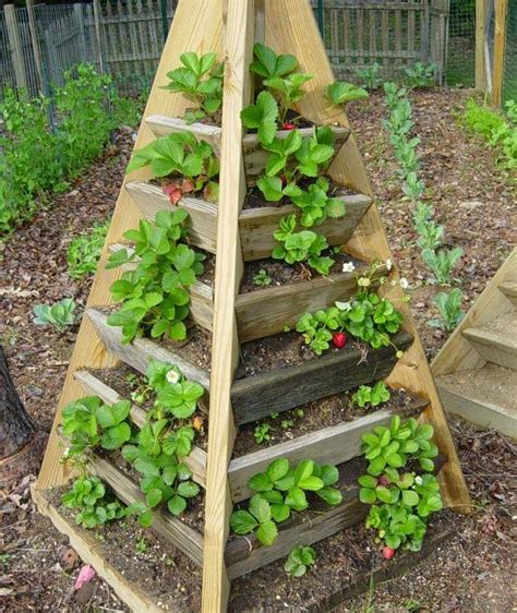 Make A Strawberry Planter by How To Build Pyramid Strawberry Planters Garden