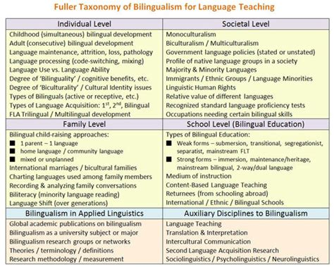 Bilingualism Essay by College Essays College Application Essays Bilingualism Essay