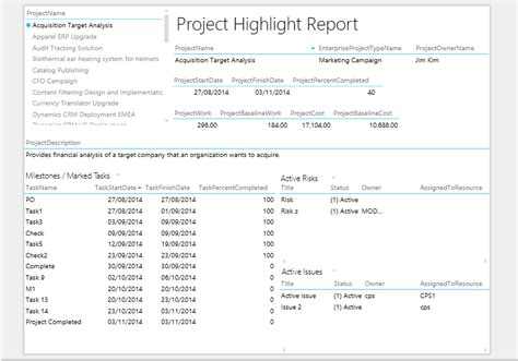 project highlight report template excel services paul s project server and project
