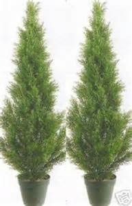 Lighted Topiary - 2 artificial 3 cedar topiary tree outdoor uv plant 36 quot patio porch cypress pine ebay