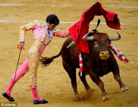 Resume Government Jobs by Bull Fighting Back On Tv Spain Brings Back Live Bull