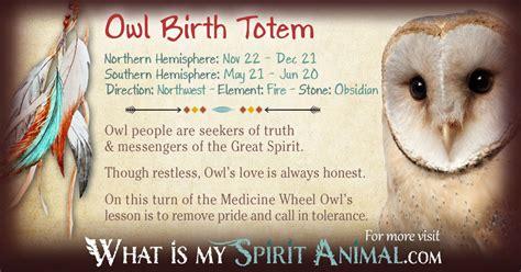 owl symbolism pure spirit owl totem native american zodiac signs birth signs