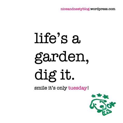 Lifes A Garden Dig It by Life S A Garden Niceandnestyblog