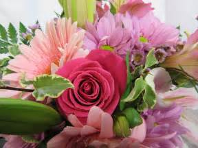 fresh cut flowers quot pink to the max quot cut flowers sudbury flower delivery l lougheed flowers l florists sudbury