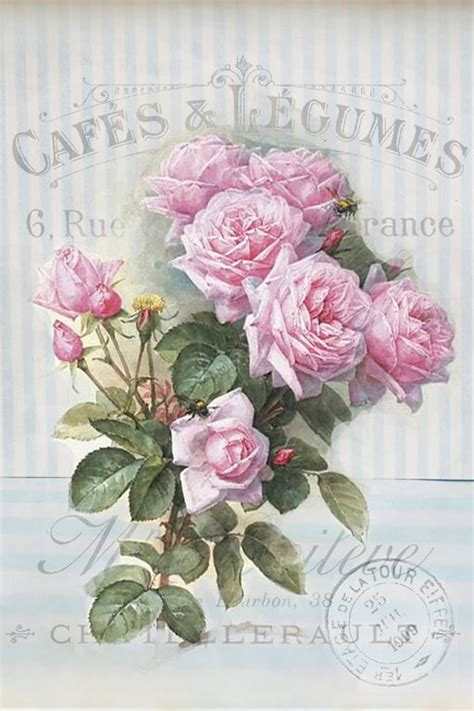 vintage roses french art print shabby cottage home decor a4 rare vintage french shabby chic instant art free