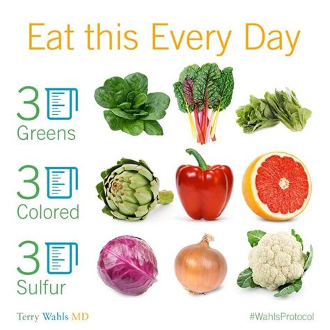 9 vegetables a day wahls protocol level one 1 this 9 cups of fruits and