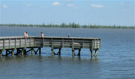 Santee State Park Cabin Rentals by A Day S Drive From Greenville Sc