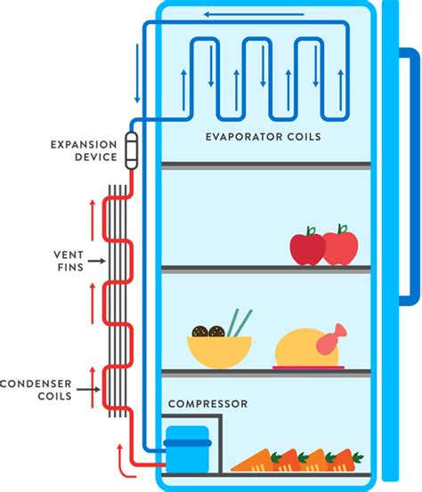 how a refrigerator works diagram wiring diagram with