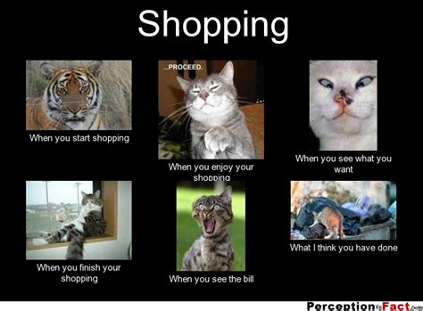 Girl Shopping Meme - shopping what people think i do what i really do