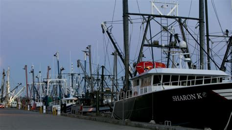 fishing boat jobs massachusetts massachusetts fishing magnate known as the codfather to