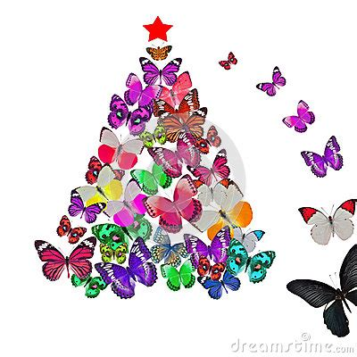 Make Valentines Card - colorful butterfly christmas card stock photos image 27451183