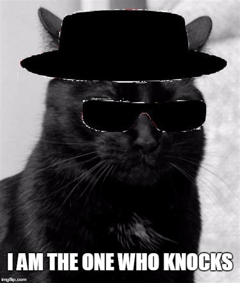 the black cat knocks on wood a bad luck cat mystery book 2 books image tagged in memes black cat pissed pissed cat