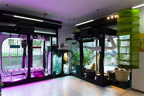 lade coltivazione indoor lade coltivazione indoor idroponica grow shop fuerte