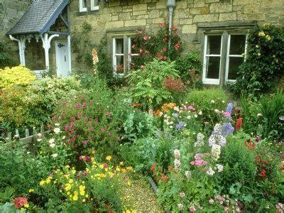 cottage garden  colourful flower beds direlton