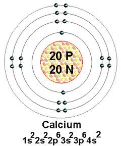 number of protons in calcium the world s catalog of ideas