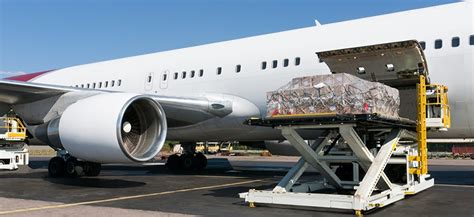 sun city air cargo llc dubai door to door air cargo service greensmedia