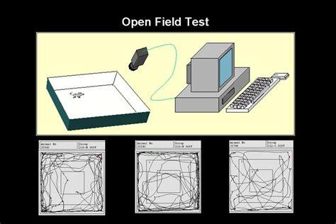 open testing image gallery open field test