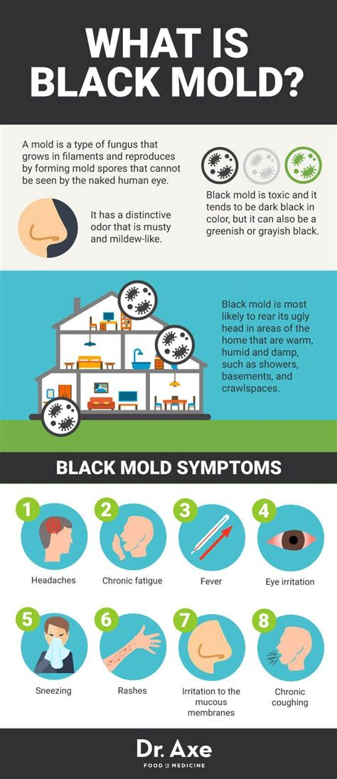 Mold Detox Takes 6 Months by Best 25 Health Problems Ideas On Manuka Honey