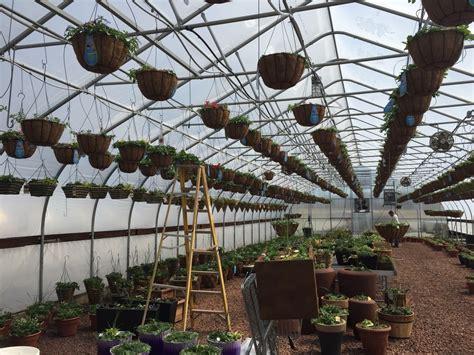 joanna gaines greenhouse 100 joanna gaines greenhouse 5 diy shade ideas for