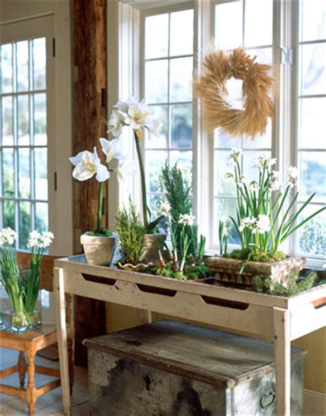 rustic console  plants