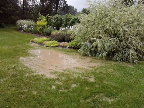 Backyard Pond Maintenance by Pond Cleaning Services Maintenance Irondequoit Greece Ny